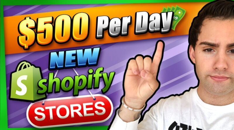 How I Make $500 / Day With My New Dropshipping Stores (Shopify Edition)